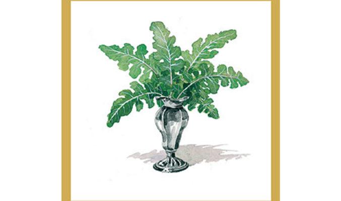 Broccolo Fiolaro di Creazzo - Sapori di Vicenza