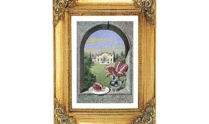 Radicchio Rosso - Sapori di Vicenza